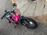 補助なし自転車に乗れるようになりたい♡D-Bike MASTER ALの画像(8枚目)