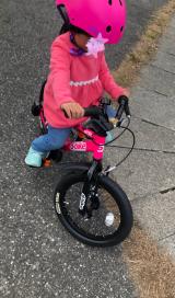 補助なし自転車に乗れるようになりたい♡D-Bike MASTER ALの画像(15枚目)