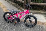 補助なし自転車に乗れるようになりたい♡D-Bike MASTER ALの画像(1枚目)