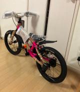 補助なし自転車に乗れるようになりたい♡D-Bike MASTER ALの画像(2枚目)