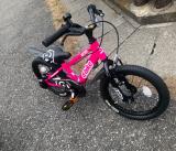 補助なし自転車に乗れるようになりたい♡D-Bike MASTER ALの画像(6枚目)