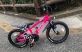 補助なし自転車に乗れるようになりたい♡D-Bike MASTER ALの画像(3枚目)