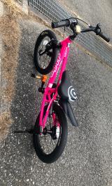 補助なし自転車に乗れるようになりたい♡D-Bike MASTER ALの画像(10枚目)