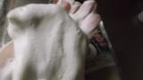 抹茶配合洗顔フォームの画像(3枚目)