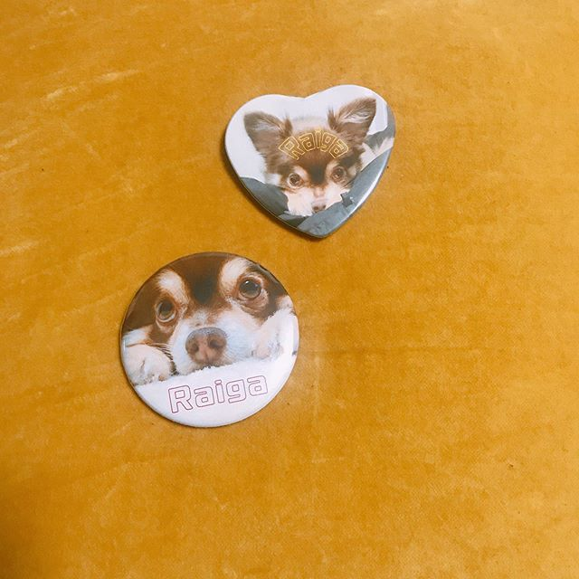 口コミ投稿:愛犬のマグネットとバッジ♡かわゆ♡#みんなのバッジ #缶バッジ #缶バッジ作り #マグネ…