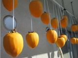 季節仕事・干し柿の画像(2枚目)