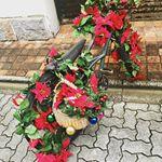 #クリスマス #CanRoll #monipla #canroll_fanのInstagram画像
