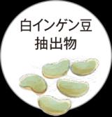 美味しいを楽しみたい人へ!糖脂にターミナリアファースト プロフェッショナルの画像(10枚目)