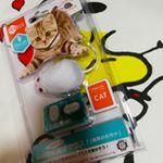 素晴らしいの発見♡6ヶ月のつかちゃんへねずみのプレゼント♡食い付きがとてもいい♡#Hexbug #突撃マウス #猫用おもちゃ #ねこだいすき #monipla #dreamblos…のInstagram画像