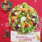~今日のサラダ~◆#リースサラダ【サラダクラブ】@saladclub_jp「クリスマスに作ろうリースサラダ」グリーンリーフレタス、サニーレタス、レッドキャベツ、パプリカ黄、ラディッシュ…のInstagram画像