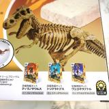 「「アンクルミルトン 恐竜発掘キット ティラノサウルス (ミニ スピノサウルス 模型付き)」☆」の画像(4枚目)