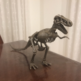 「「アンクルミルトン 恐竜発掘キット ティラノサウルス (ミニ スピノサウルス 模型付き)」☆」の画像(8枚目)