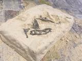「「アンクルミルトン 恐竜発掘キット ティラノサウルス (ミニ スピノサウルス 模型付き)」☆」の画像(7枚目)