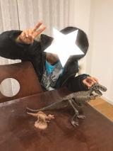 「「アンクルミルトン 恐竜発掘キット ティラノサウルス (ミニ スピノサウルス 模型付き)」☆」の画像(9枚目)