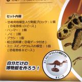 「「アンクルミルトン 恐竜発掘キット ティラノサウルス (ミニ スピノサウルス 模型付き)」☆」の画像(5枚目)