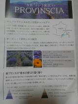 プロバンシア☆優雅なホテルのバスセット①の画像(2枚目)