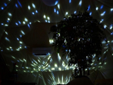 「夢のような非日常空間♪グランピングのお部屋紹介」の画像(45枚目)