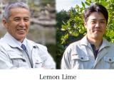 レモンライムでレモン酢作り♡の画像(4枚目)