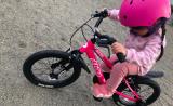 「♡D-Bike MASTER AL」の画像(10枚目)
