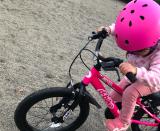 「♡D-Bike MASTER AL」の画像(8枚目)