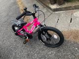 「♡D-Bike MASTER AL」の画像(3枚目)