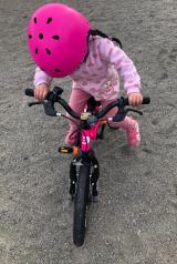 「♡D-Bike MASTER AL」の画像(7枚目)