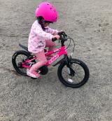 「♡D-Bike MASTER AL」の画像(12枚目)