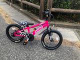 「♡D-Bike MASTER AL」の画像(2枚目)