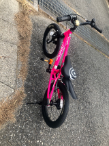 「♡D-Bike MASTER AL」の画像(6枚目)