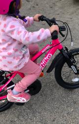 「♡D-Bike MASTER AL」の画像(11枚目)