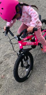 「♡D-Bike MASTER AL」の画像(9枚目)