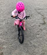 「♡D-Bike MASTER AL」の画像(13枚目)