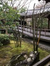 「好古園 姫路城西御屋敷跡庭園 」の画像(2枚目)