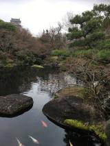 「好古園 姫路城西御屋敷跡庭園 」の画像(1枚目)