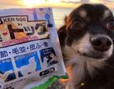 「犬用コラーゲン!「健・ドッグ」   始加の部屋 - 楽天ブログ」の画像(1枚目)