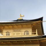 三重・京都旅行④ 雪の金閣寺の画像(3枚目)