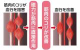 「磁気の力で腰部の血行を改善しコリをほぐす」の画像(5枚目)