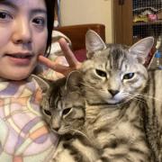 「るんるん!」オヤツ大好きなネコちゃん大募集!★食いつき抜群★安心おやつ『鹿ピューレ』の投稿画像