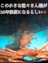 「♡絶景に癒される休日〜コロナウイルス感染者数ゼロの都道府県の共通点を読んでしまった(´༎ຶོρ༎ຶོ`)」の画像(8枚目)