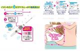 イオン歯ブラシKISS YOUからUV除菌ケースセットが新発売♪の画像(3枚目)
