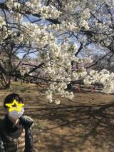 新宿御苑をお散歩の画像(6枚目)
