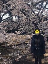 新宿御苑をお散歩の画像(4枚目)