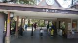 新宿御苑をお散歩の画像(2枚目)