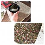 🔶焼き海苔山本海苔といえば、昔から季節のご挨拶に頂く高級品。いつ食べても安定した美味しさが味わえます。今回は具付きのり「一藻百味」で、ご飯を一杯。うめのつぶつぶが海苔に…のInstagram画像