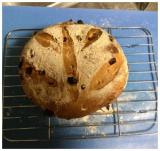 「レーズン&クランベリーのパン: 食いしん坊@うずちゃん日記」の画像(3枚目)