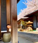 .僕のお家紹介するよ🙋🏻.嘘です!家ではない!笑..こんな日本庭園ある素敵な家に住みたい🥰...2枚目もう2本目に突入シリカ水..化粧水に混ぜていると肌の調子が良い…のInstagram画像