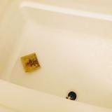 生薬100%入浴剤のチカラで、体ポカポカ♪【養生薬湯】の画像(4枚目)