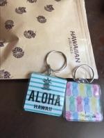 ハワイへ家族de旅行GO! 続編5: くみたろうの カラフルな日々 シーズン2の画像(2枚目)