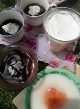 「ニッタバイオラボのコラカフェデザートの素 - 楽しい♥️節約主婦日記」の画像(4枚目)