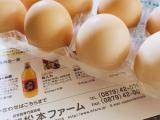 「烏骨鶏の卵で台湾カステラ♪」の画像(2枚目)